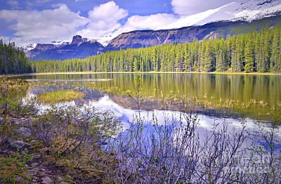 Photograph - A Calm Day At Buck Lake by Tara Turner