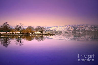 Photograph - A Calm Winter Morning by Tara Turner