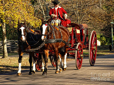 Photograph - A Carriage Ride by Shari Nees
