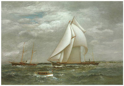 Yacht Club Painting - A Centerboard Schooner Of The New York Yacht Club by James Gale Tyler