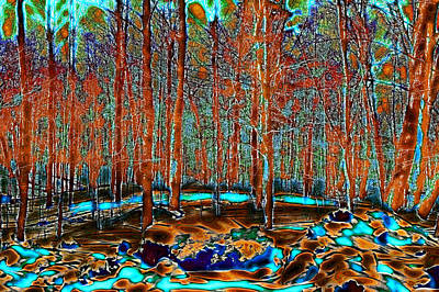 Nature Abstract Digital Art - A Change In The Seasons by David Patterson