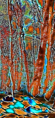 Corporate Art Photograph - A Change In The Seasons Vi by David Patterson