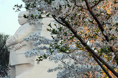Art Print featuring the photograph A Cherry Blossomed Martin Luther King by Cora Wandel