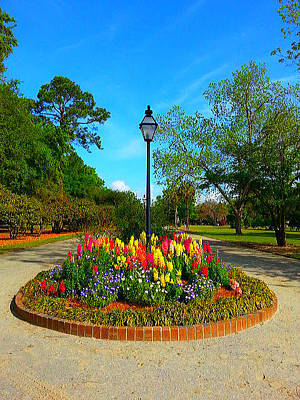 Photograph - A Clear Colorful Park's View by Joetta Beauford
