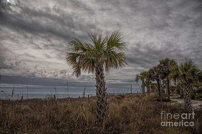 A Cloudy Day At The Beach Original