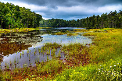 Photograph - A Cloudy Summer Day At Fly Pond by David Patterson