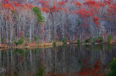 Photograph - A Cold Day In November by Geri Glavis
