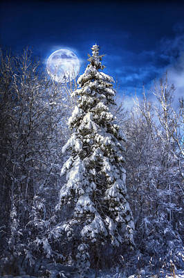 A Cold Night In Northern Maine Art Print by Gary Smith