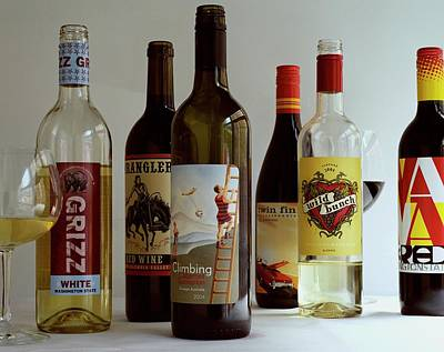 Of Wine Bottles Photograph - A Collection Of Wine Bottles by Romulo Yanes