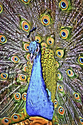 Digital Art - A Colorful Peacock Display by Patrick M Lynch