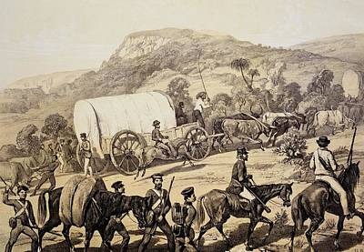 Colonial Troops Drawing - A Convoy Of Wagons by English School