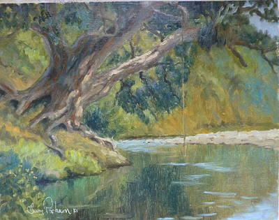 A Coramandel Stream Art Print by Terry Perham