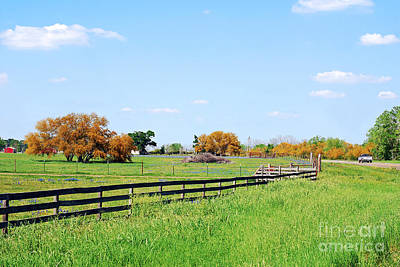 Photograph - A Country Drive In Texas by Connie Fox