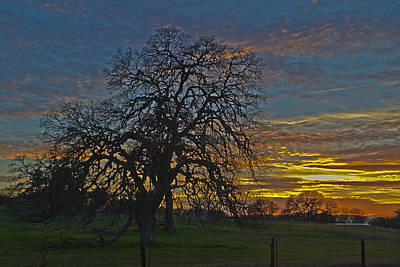 A Country Sunset Art Print by Richard Risely