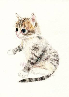 Drawing - A Cute Kitten by Jingfen Hwu