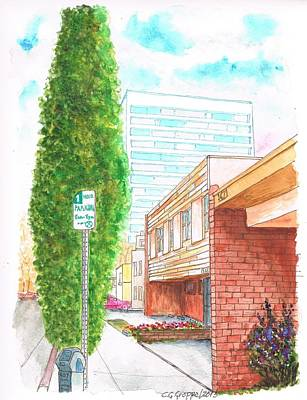 Santa Monica Painting - A Cypress In Pontios Ave And Santa Monica Blvd., Santa Monica, California by Carlos G Groppa