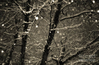 Photograph - A Dark And Snowy Night Painterly 4 by Andee Design