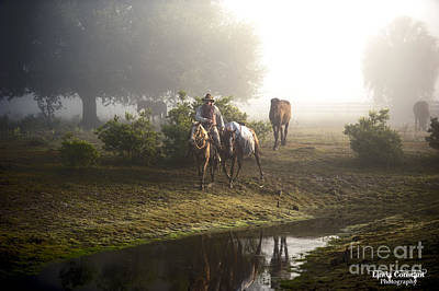 A Day At Dry Creek Art Print