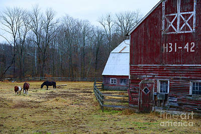 Country Scene Photograph - A Day At The Farm by Paul Ward