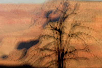 Photograph - A Dead Tree On The Rim Of The Canyon by Phil Schermeister