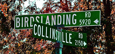 Photograph - A Delta Crossroad Sign by Joseph Coulombe