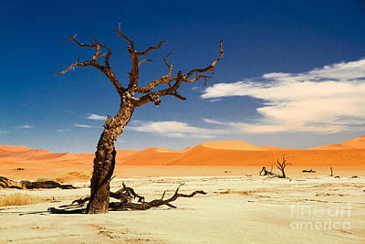 A Desert Story Art Print by Juergen Klust