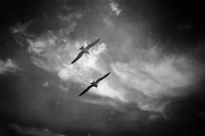 Surreal Photograph - A Deux by Taylan Apukovska
