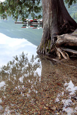 Lake Mcdonald Photograph - A Different Perspective by Heather Kenward