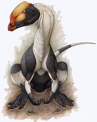 Animal Tracks Digital Art - A Dilophosaurus Dinosaur by H. Kyoht Luterman