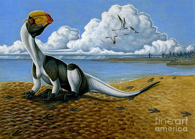Animal Tracks Digital Art - A Dilophosaurus Dinosaur Sitting In Mud by H. Kyoht Luterman