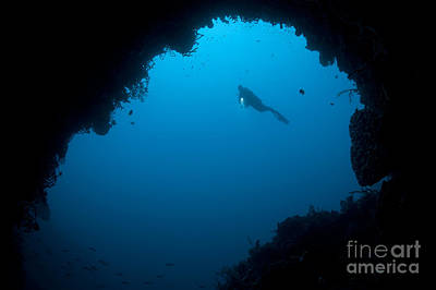 A Diver Explores A Cavern In Gorontalo Art Print by Steve Jones