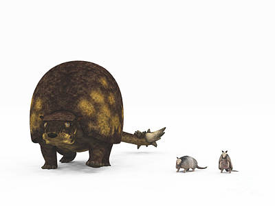 A Doedicurus Glyptodont Compared Art Print by Walter Myers