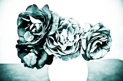 A Dream Of Roses Art Print by Ronda Broatch