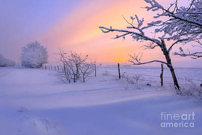 Snow Drifts Photograph - A Drift by Dan Jurak