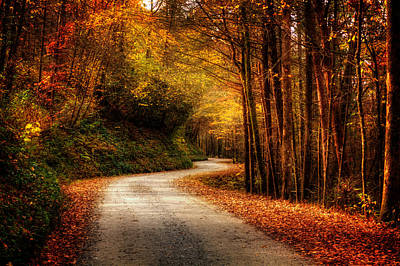 Photograph - A Drive In The Mountains Of Western North Carolina by Greg Mimbs