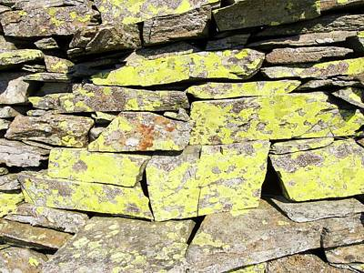 A Dry Stone Wall On Lingmoor Art Print by Ashley Cooper