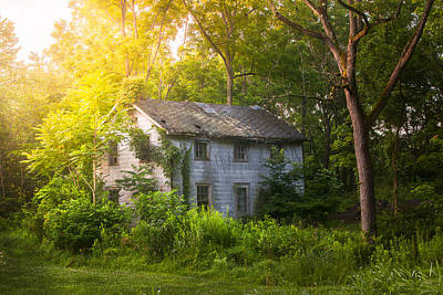A Fading Memory One Summer Morning - Abandoned House In The Woods Art Print by Gary Heller