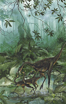 Three Rivers Digital Art - A Family Of Ornithomimus Dinosaurs by Jan Sovak