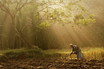 Agriculture Photograph - A Farmer by Antonyus Bunjamin (abe)