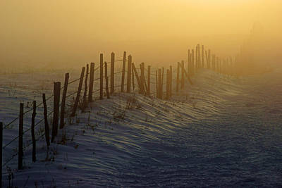 Photograph - A Fence In The Fog by Daniel Woodrum
