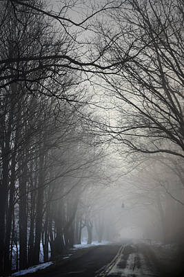 Photograph - A Few Of My Favorite Things Trees In Fog by Penny Hunt