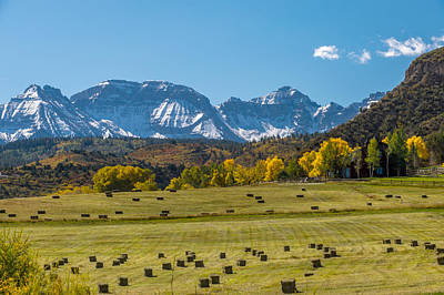 Photograph - A Field Of Hay In Colorado by Willie Harper
