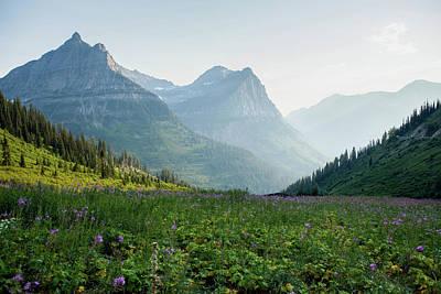 A Field Of Wildflowers At Glacier Art Print