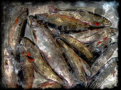 A Fine Catch Of Trout - Steel Engraving Art Print by Barbara Griffin