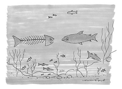 Fish Underwater Drawing - A Fish Skeleton With A Head Speaks To Another by Michael Crawford