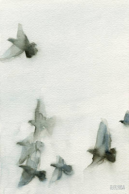 In Flight Painting - A Flock Of Pigeons 1 Watercolor Painting Of Birds by Beverly Brown Prints
