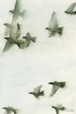 In Flight Painting - A Flock Of Pigeons 2 Watercolor Painting Of Birds by Beverly Brown Prints