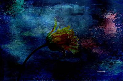 Photograph - A Floral Dream by Randi Grace Nilsberg
