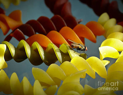 Housefly Wall Art - Photograph - A Fly In My Pasta by Robert Frederick
