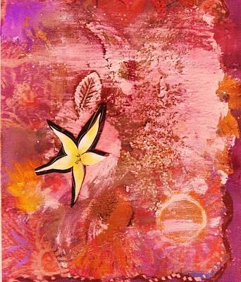 A Flying Star Flower Print by Anne-Elizabeth Whiteway